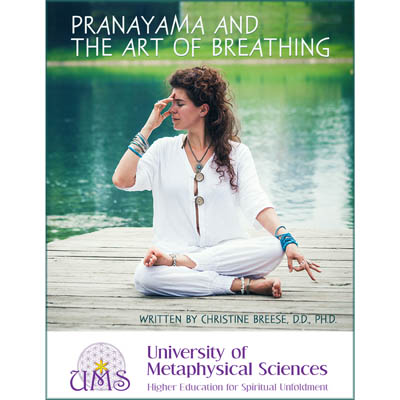 image Pranayama and the Art of Breathing by Christine Breese