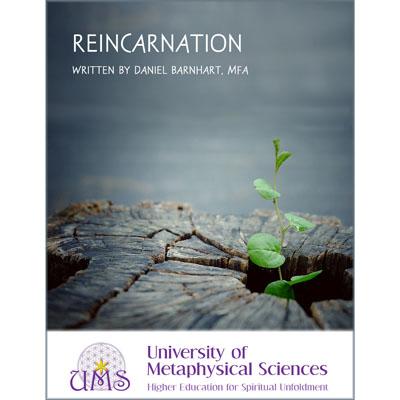 image Reincarnation by Daniel Barnhart MFA