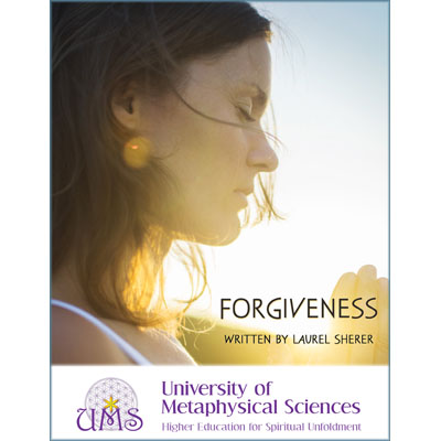 image buy Forgiveness by Laurel Sherer